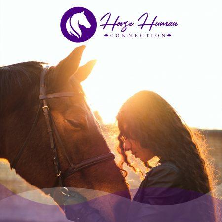 Terapias con caballos en Morelia Michoacán